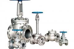 more_valves