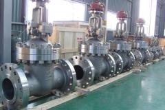 valves_SW_gate_valve